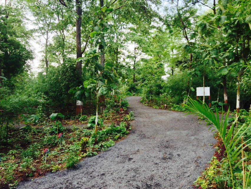 Janki Van, Bhinar, Unai, Gujarat - Tree Forest Garden In Surat, Navsari Based On Ramayana - 11