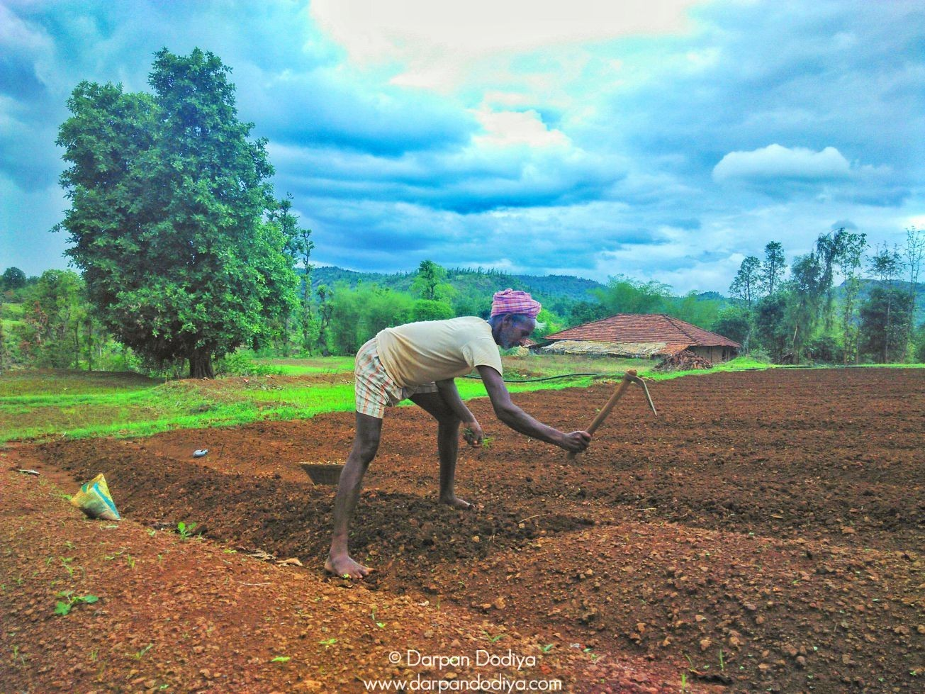 Indian farmer sweating in during monsoon