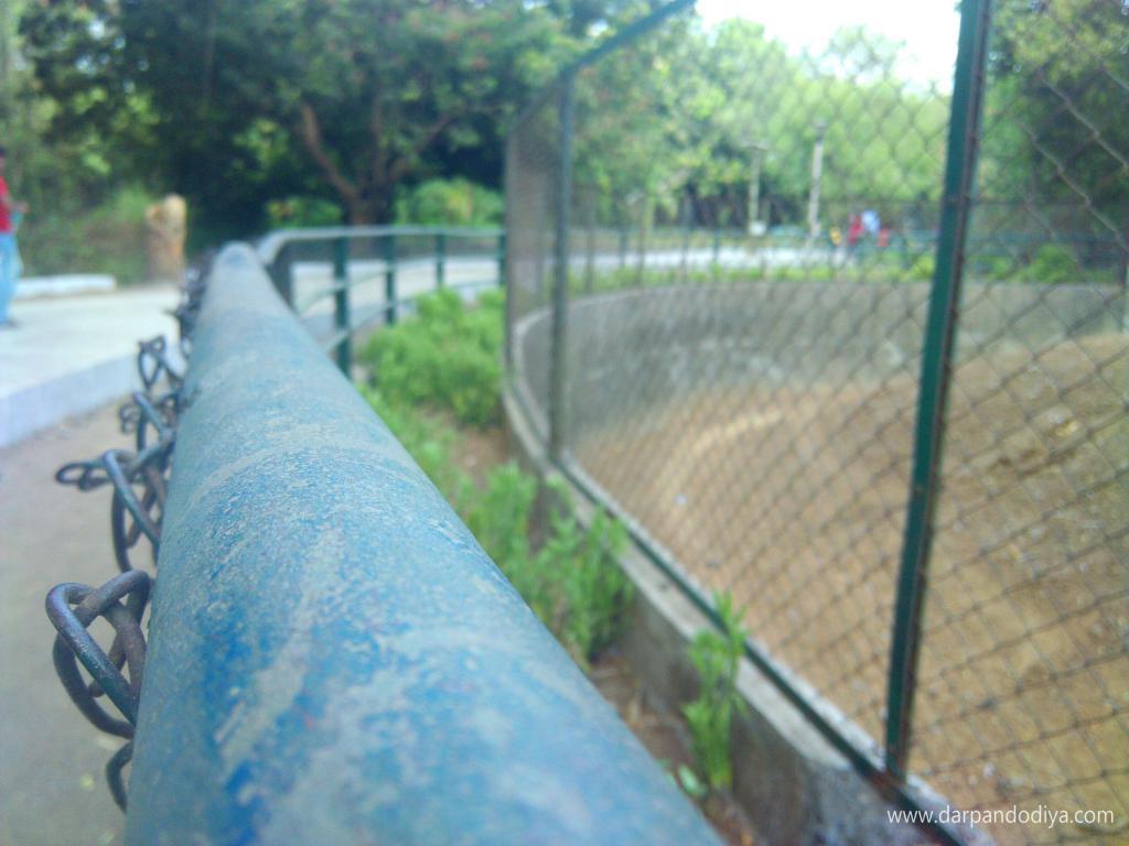 Sarthana Nature Park Zoo Surat - Entry Fess, Timing, Animals, Zoo In Gujarat, Photos, Map