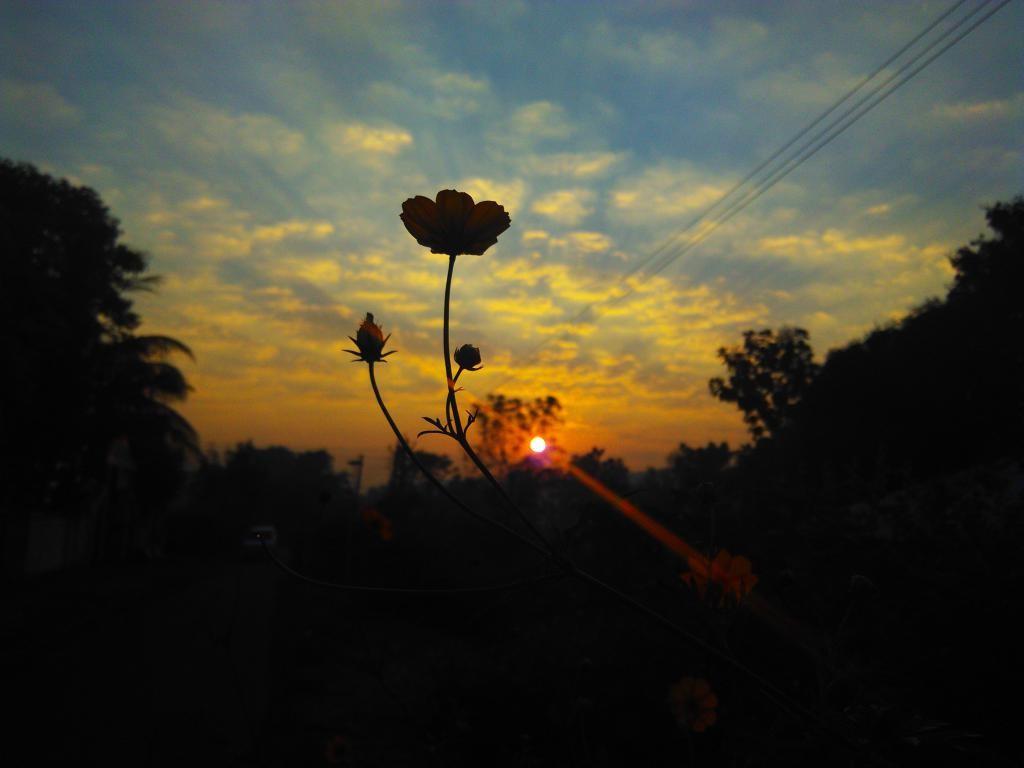 Sunrise & Sunset Store - Masking Sun With Lens - 13