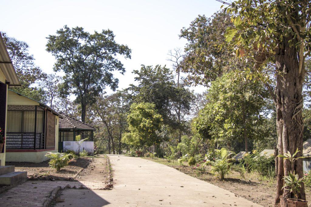 1A Dev Mogra Narmada Eco Tourism Campsite