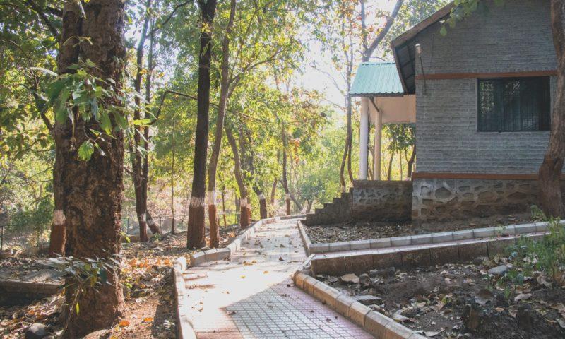 3C Sagai Malsamot Narmada Eco Tourism Campsite